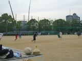 ラグビー・野球.JPG